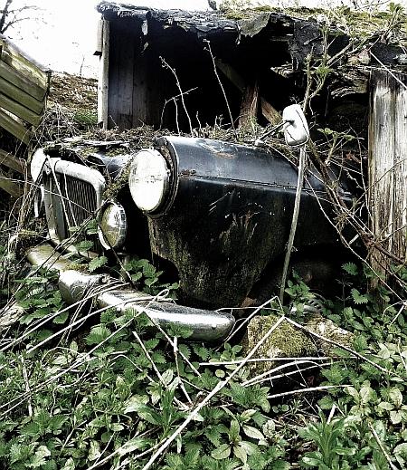 eleanor bennett photo of nature reclaiming vehicle